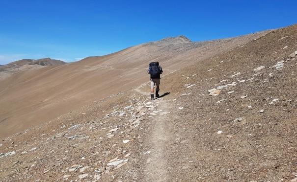 Skyline Trail 29