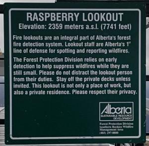Raspberry 12