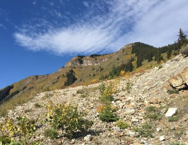 Wind Ridge 5