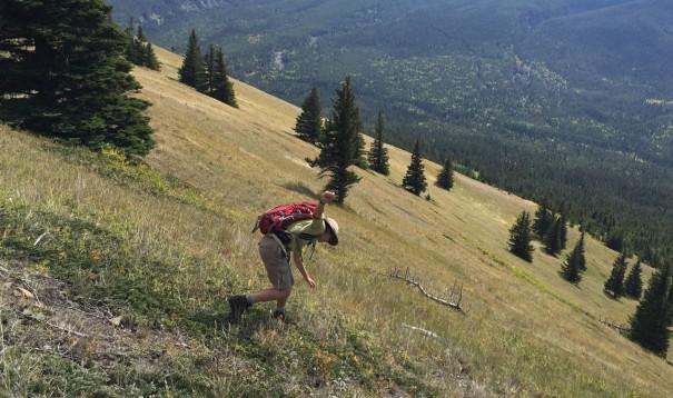 Wind Ridge 7